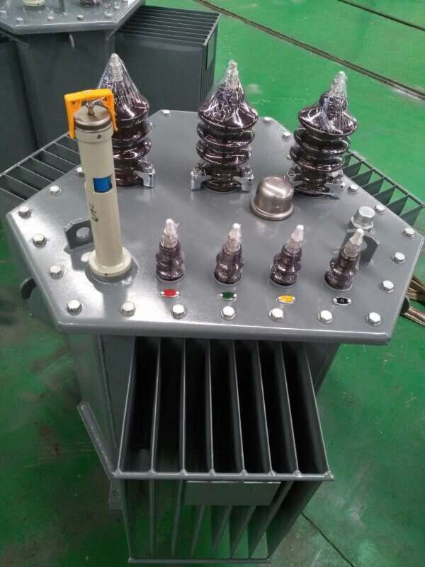 JSM Transformer OIL IMMERSION TYPE S13-200KVA 11/0.415KV & JSM T other equipment